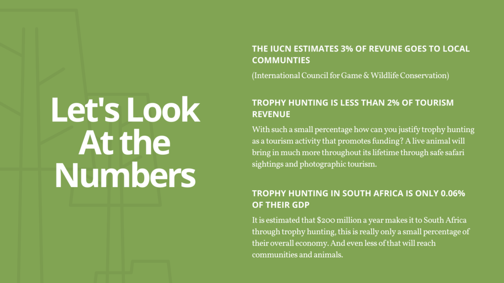 trophy-hunting-7